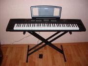 Синтезатор/электропиано Yamaha-np-v80