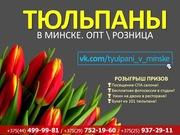 Тюльпаны к 8 марту по самым лучшим ценам