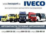 Автозапчасти грузовых автомобилей IVECO и др. авто.