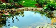 Производим чистку бассейнов,  прудов,  фонтанов.