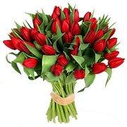 Продажа цветов к 8 марта: крокусы,  примулы,  тюльпаны