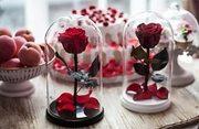 Роза в колбе стабилизированная вечная живая