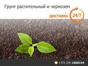 Грунт растительный и чернозем. Низкие цены.