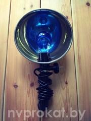 синяя лампа напрокат